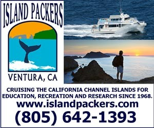 VB-Ad-Block-IslandPackers