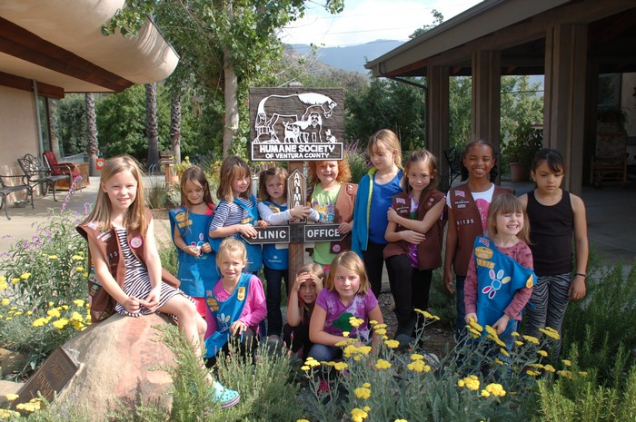 youth girl scouts