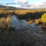 stuff river settlement